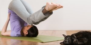 Woman in a traditional stretching yoga pose at home with her cat relaxing near her